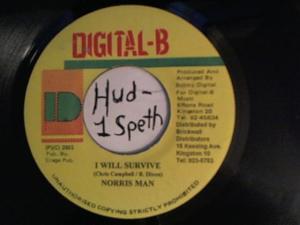 Hud-2 vinyl photos 930