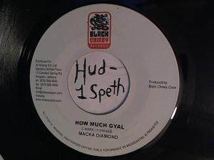 Hud-2 vinyl photos 936