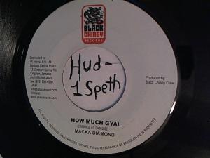 Hud-2 vinyl photos 937