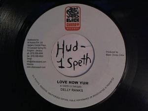 Hud-2 vinyl photos 938