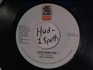 Hud-2 vinyl photos 939
