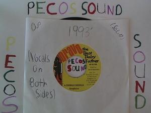 Hud-2 vinyl photos 971