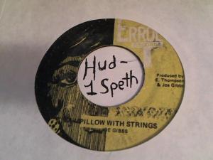 Hud-2 vinyl photos 456